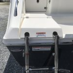 Cobia ladder cover